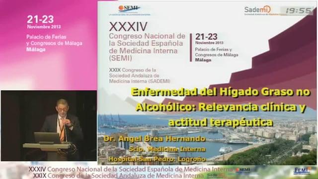 Esteatosis hepática no alcohólica: Relevancia clínica y actitud terapéutica