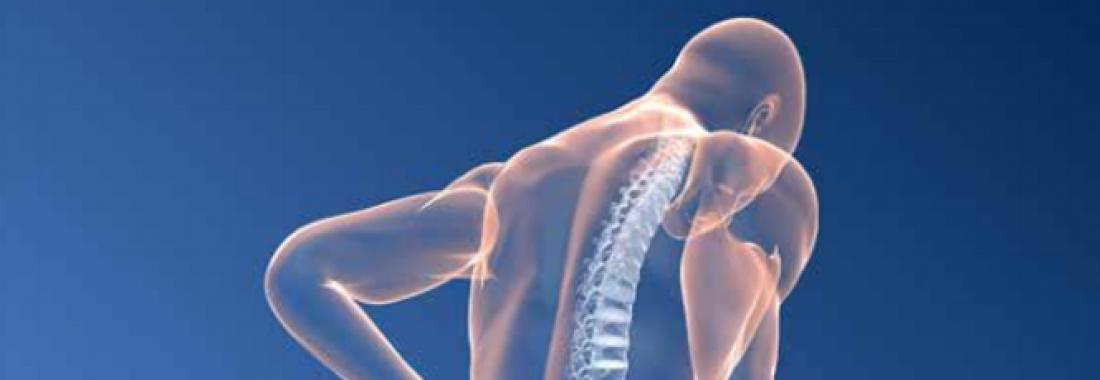 XI Reunión Osteoporosis